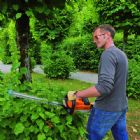 Certificate in the Safe Use of Hedge Trimmers
